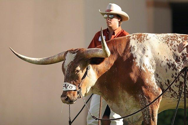 Bullfighter Celebrates 102nd Birthday